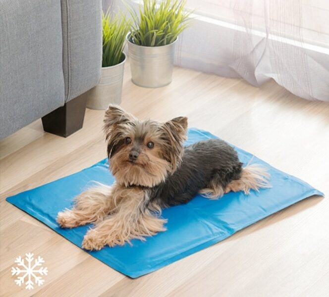 Vėsinantis kilimėlis 50x40